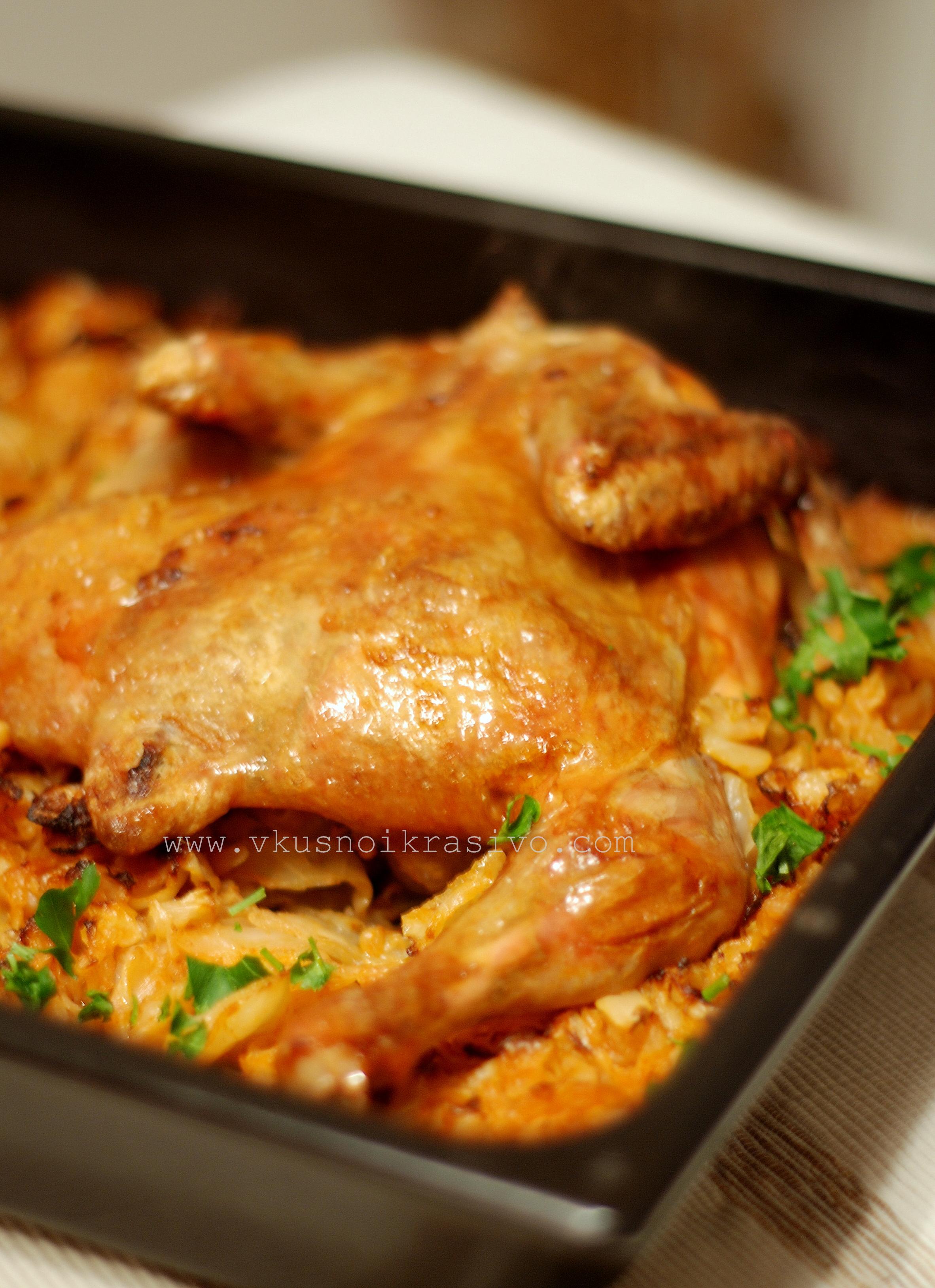 Пиле фото